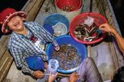 Đầm phá Tam Giang bội thu tôm cá tươi ngon là vì điều này đây