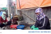 """Hải sản ở Quảng Ninh """"bí"""" đầu ra vì dịch Covid-19"""