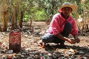 """Chuyện nông dân cầm cố vườn điều vẫn """"nóng"""" ở Bình Phước"""