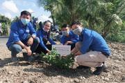 """Tuổi trẻ Agribank khu vực Tây Nam bộ với chiến dịch """"Agribank - vì tương lai xanh - thêm cây xanh, thêm sự sống"""""""