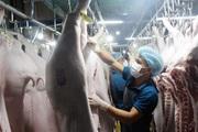 Giá heo hơi hôm nay 25/3: Dịch Covid-19 nhập khẩu thịt lợn từ đâu?