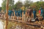 Cà Mau: Hạn, mặn đe dọa hệ thống cống thủy lợi vùng ngọt hóa