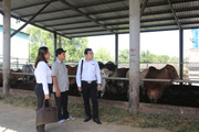 """Agribank """"tiếp sức"""" về vốn giúp nông dân đổi đời"""
