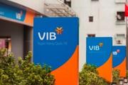 """Lãi lớn trong quý 1/2020, VIB có """"giấu"""" nợ xấu?"""