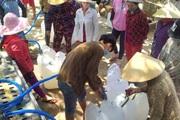 Hạn mặn khốc liệt, doanh nghiệp vượt 80km mang nước ngọt cho dân