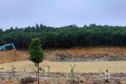 Lấn hồ, lấy đất, xây khu sinh thái trái phép trong đất rừng