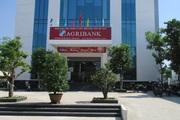 Agribank Đại Lộc (Quảng Nam): Bám sát mục tiêu phát triển để tạo dựng niềm tin với khách hàng