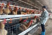 Thái Nguyên: Từ phong trào thi đua nông dân sản xuất giỏi, xuất hiện nhiều tỷ phú, nhà sáng chế