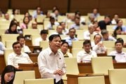 Bộ trưởng Bộ Nông nghiệp: Giá lợn hơi sẽ giảm khi nhập khẩu lợn sống từ Thái Lan