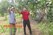 Thành phố Lai Châu: Nhiều giải pháp phát triển diện tích cây ăn quả