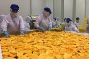 Nông sản Việt Nam và cuộc đua vào thị trường toàn cầu 15.000 tỷ USD