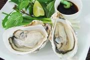 Tại sao ngày xưa ăn hàu sống ít bị nhiễm bệnh hơn bây giờ?