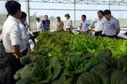 Quảng Nam: Nông thôn mới Tam Kỳ ngày càng khang trang, sạch đẹp và khá giả