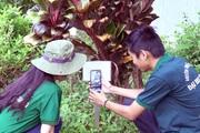 Làm nông thời công nghệ 4.0: Giơ điện thoại lên biết ngay tên cây thuốc