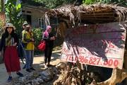 Lạ ở Hòa Bình: Quán không người bán, khách mua quả bí, con gà tự bỏ tiền vào giỏ