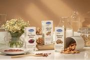 """Xuất khẩu sữa hạt vào Hàn Quốc, Vinamilk tự tin tại """"sân chơi lớn"""""""