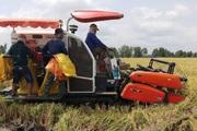 Kéo dài thời hạn miễn thuế sử dụng đất nông nghiệp