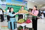 Đảng bộ huyện Mộc Châu: Một nhiệm kỳ nhìn lại