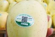 Ngăn chặn trò mạo danh làm hại nông sản Việt