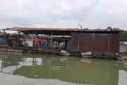 Đồng Nai: Truy tìm nguyên nhân hàng chục tấn cá bè chết trên sông Cái