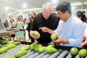 Xuất khẩu nông sản Sơn La: Thành công nhờ cả hệ thống chính trị vào cuộc