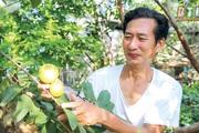 """Thái Bình: Hé lộ bất ngờ về """"báu vật"""" của làng là thứ trái đặc sản quý hiếm này đây"""