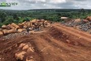 Ngang nhiên khai thác trái phép hàng trăm khối đá tại Chư Sê, Gia Lai