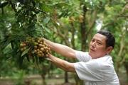 Dịch Covid-19: Hưng Yên tìm cách bán nhãn... trực tuyến!