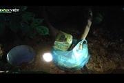 Đào vườn sau nhà riêng của một người ở Nghệ An, phát hiện số ma túy khủng chôn giấu