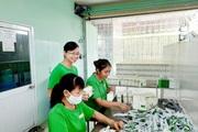 Khởi nghiệp 'ngược bão': Vươn tầm rau má Việt