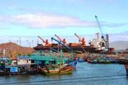 Bình Định: Vì sao một chủ tàu đánh cá biển lại bị UBND tỉnh phạt tới 900 triệu đồng?
