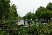 Huế báo cáo thiệt hại bão số 5, người thương vong và nhà cửa hư hại tăng mạnh