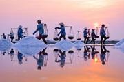Phê duyệt Đề án phát triển ngành muối