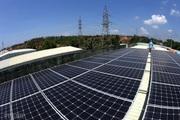 Cổ phiếu doanh nghiệp điện mặt trời nổi sóng