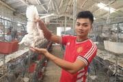 Rời nước Nga về quê làm nông dân, 9X bảnh trai này nuôi thứ chim gì mà mỗi tháng đút túi 25 triệu đồng?