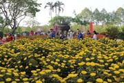 Huế: Cấm bán hoa Tết trên vỉa hè nhiều tuyến đường trung tâm thành phố