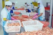 Bạc Liêu đặt mục tiêu xuất khẩu tôm nguyên con sang thị trường Úc