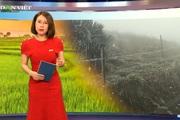 Bản tin Thời sự Dân Việt 8/1: Miền Bắc lạnh dưới 0 độ, băng giá xuất hiện tại đỉnh Mẫu Sơn