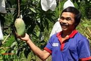Yên Châu sản xuất nông nghiệp theo hướng hàng hóa