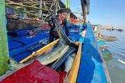 """Bình Định: Ngư dân """"tiết lộ"""" trúng đậm sau vài giờ ra khơi"""
