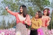 Giới trẻ rủ nhau check-in tại đồng hoa cánh bướm có một không hai ở Hà Tĩnh
