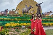 Gia đình trâu cao 7,5m xuất hiện ở tỉnh Bình Định đón Tết Tân Sửu 2021
