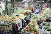 """TP.HCM: Trái cây chợ đầu mối nằm chờ... Tết, dự báo bung hàng vào """"đỉnh điểm"""" 27 tháng Chạp"""