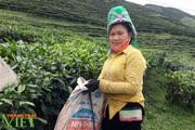 Hoàn thiện nốt 3 tiêu chí, Tân Uyên sẽ cán đích nông thôn mới