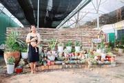 Chỉ từ 700 nghìn đồng, cô kỹ sư sinh học gây dựng vườn xương rồng hơn 100 loại độc, lạ