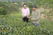 Mường Cơi nâng cao chất lượng các tiêu chí nông thôn mới