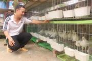 Bắc Ninh: Thu hút hội viên bằng người thực, việc thực, cách làm hay
