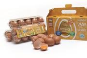 Trứng gà Dabaco có gì đặc biệt mà hút khách?