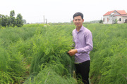 """Bắc Ninh: Trồng """"rau vua"""", mít Thái, thả trai nhả ngọc dưới ao, chàng nông dân trẻ giàu nhanh"""