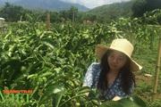 Lai Châu: Nỗ lực kéo giảm tỷ lệ hộ nghèo ở một xã vùng cao